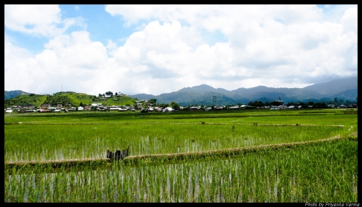 The beautiful landscape of Ziro